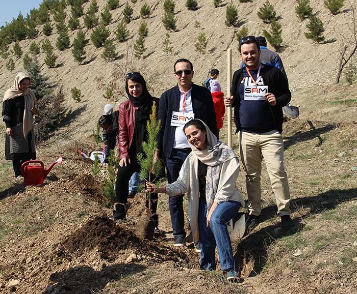 tree1-samgroup